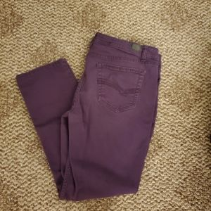 2/25% off Jordache skinny plum jeans